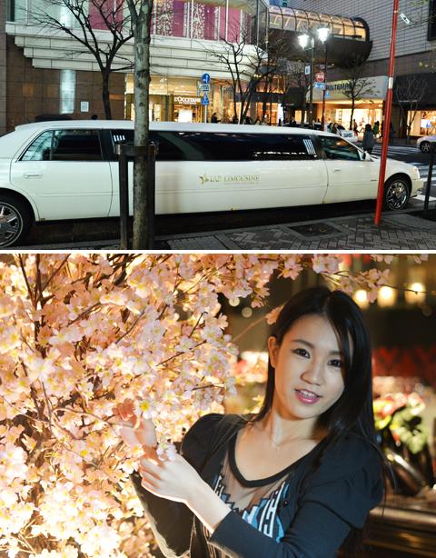 上:前回同様、リムジンがお出迎え 下:会場には桜の木が