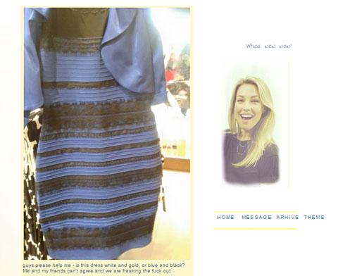 謎のドレスを投稿したTumblrページ