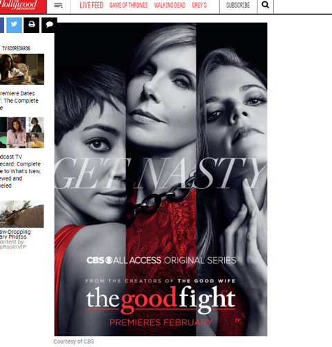 「The Good Fight」ポスター