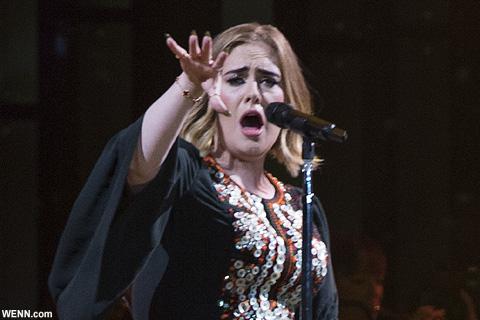 アデル、コンサートにて「立たないで!」を連呼するセキュリティに一言! 「これはミュージックショーなのよ!」
