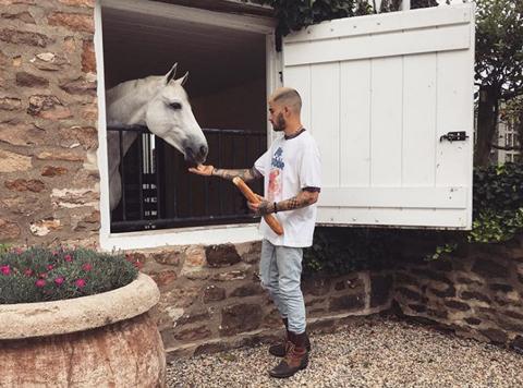 ゼインとジジの愛馬