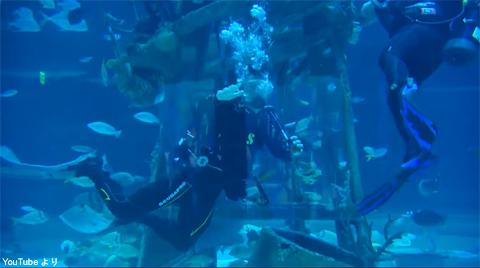 水槽の中で泳ぐマーク・ウォールバーグ