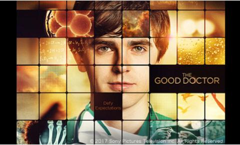 「The Good Doctor(原題)」