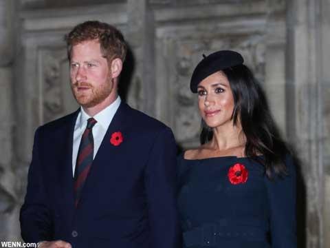 英ヘンリー王子と、メーガン妃