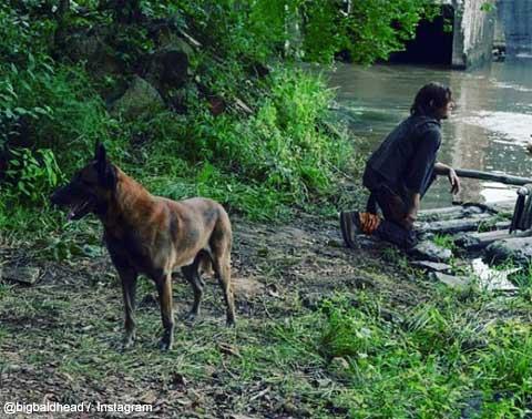 ノーマン・リーダスと、「犬」