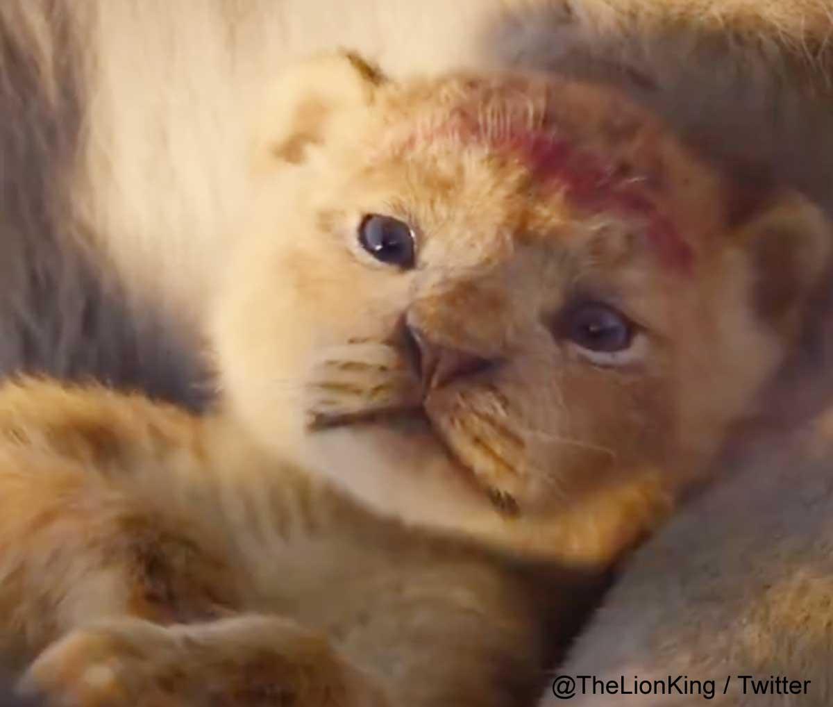 実写版「ライオン・キング」新たな予告編&ポスターが解禁! ライオン親子が神々しく夕日に浮かぶ[動画あり]