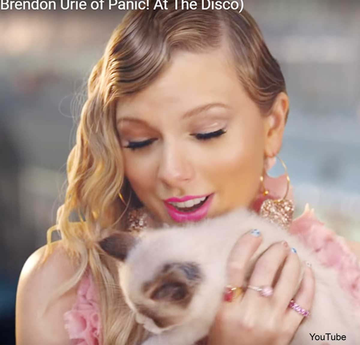 テイラー・スウィフト、新しく飼った猫は「セットで出会った」! 「Me!」MVでこの子猫が果たした役割とは?