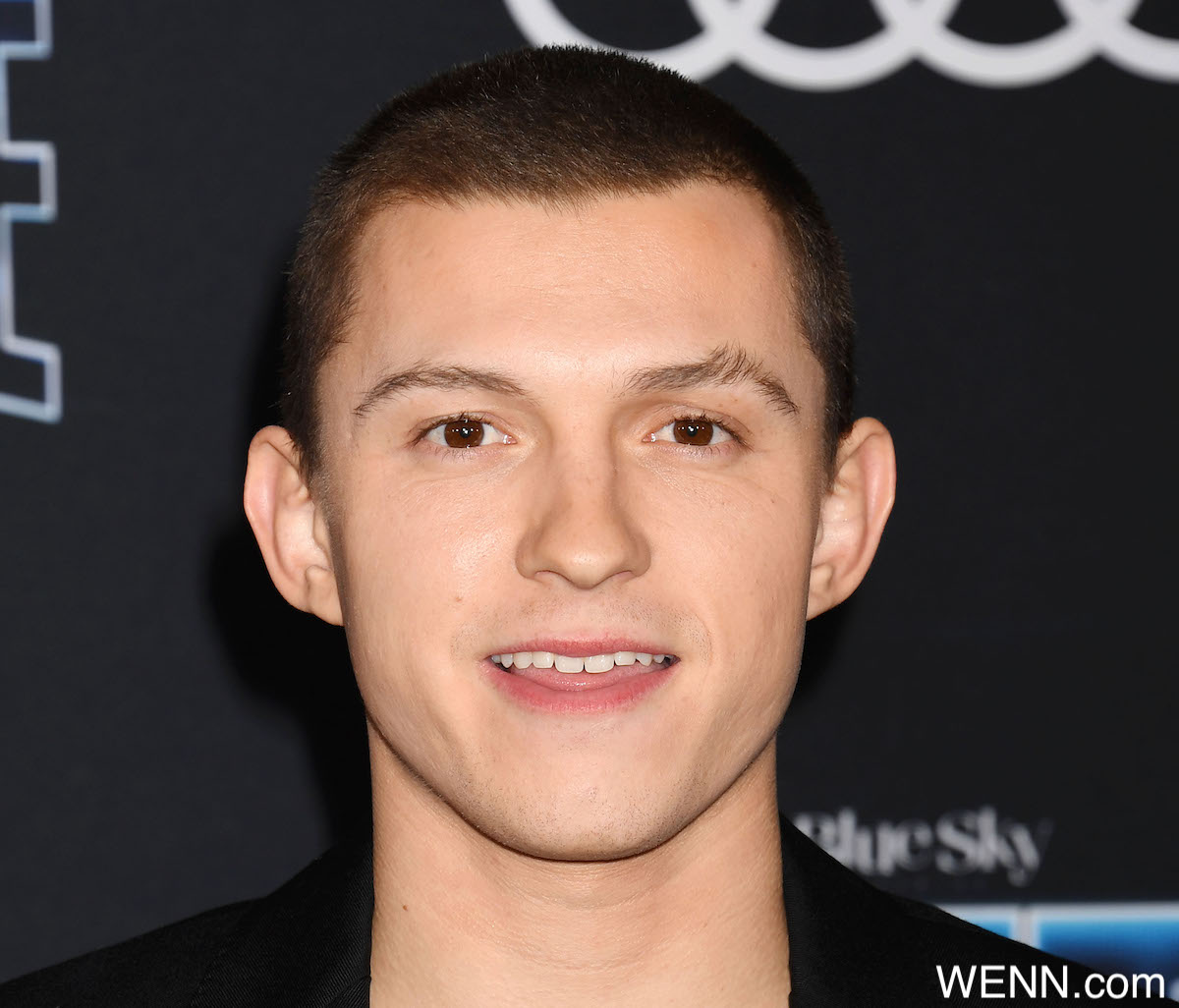 """Tom Holland at the premiere of 20th Century Fox's """"Spies In Disguise"""" at El Capitan Theatre on December 04, 2019 in Los Angeles, USA. Photograph: © Joe Sutter/PacificCoastNews. Los Angeles Office (PCN): +1 310.822.0419 UK Office (Avalon): +44 (0) 20 7421 6000 sales@pacificcoastnews.com Where: Hollywood, California, United States When: 04 Dec 2019 Credit: WENN/Avalon **WENN/Avalon**"""