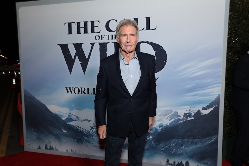 Harrison Ford arrives as Twentieth Century Studios' presents the World premiere of The Call of the Wild at the El Capitan Theater in Los Angeles, CA on Thursday, February 13, 2020.  (photo: Alex J. Berliner/ABImages)