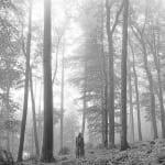 テイラー・スウィフト アルバム『folklore (deluxe version)』