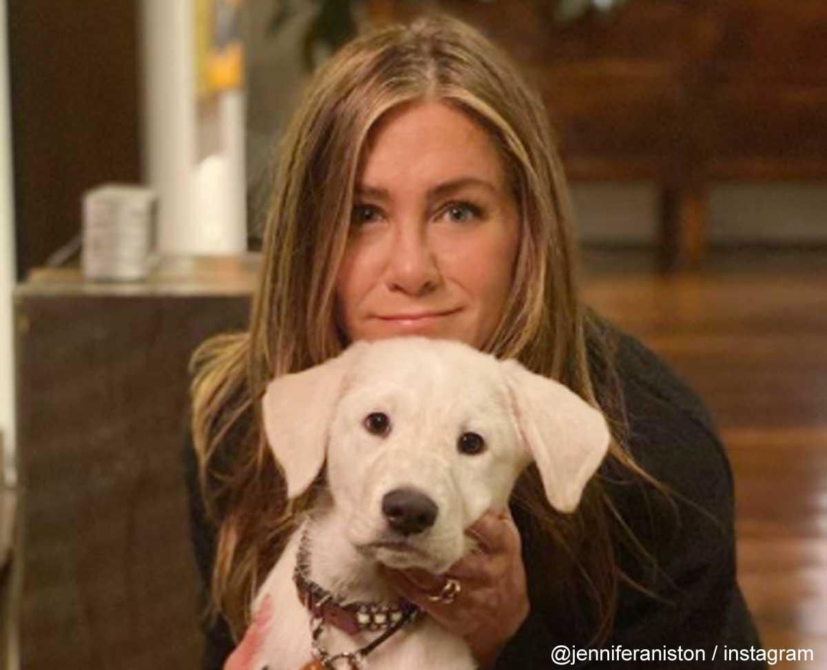ジェニファー・アニストンと愛犬