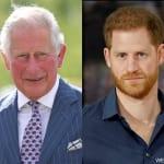 チャールズ皇太子とヘンリー王子