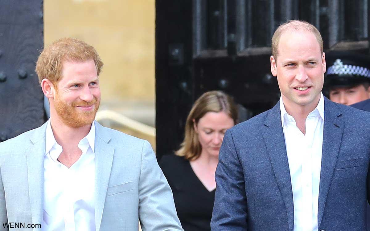 ヘンリー王子と、ウィリアム王子