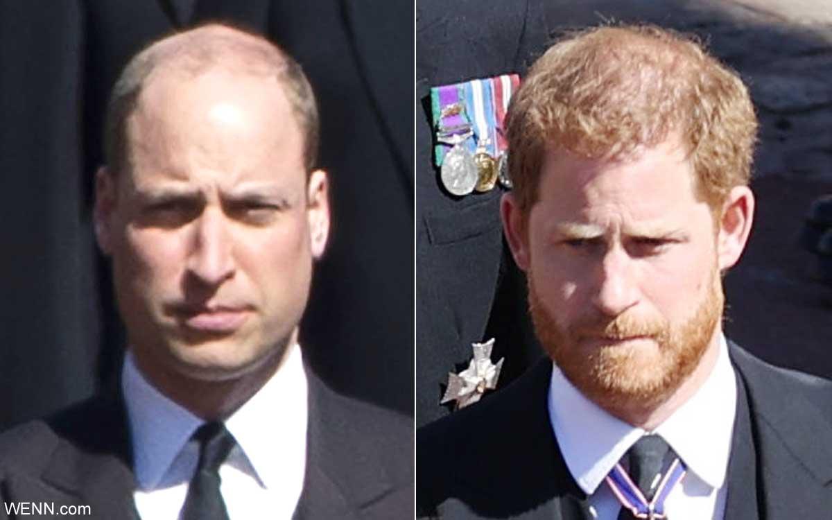 ウィリアム王子と、ヘンリー王子
