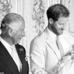 チャールズ皇太子、ヘンリー王子、アーチーくん
